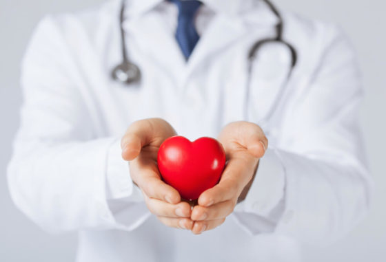 Doctor holding a heart figure
