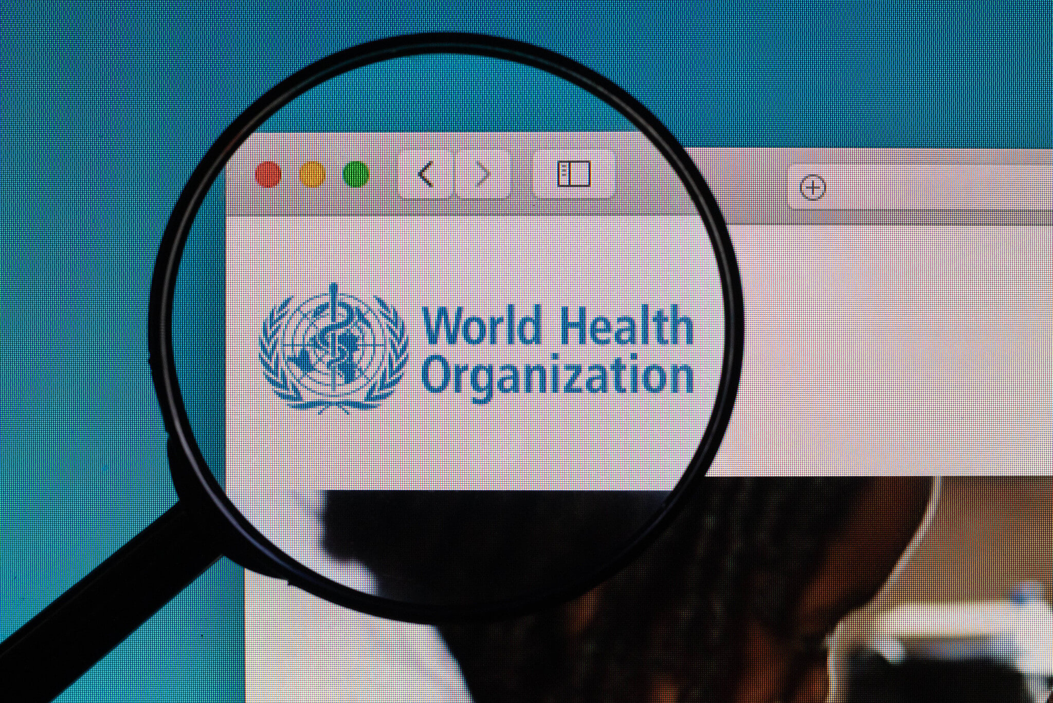 World Health organization logo under magnifying glass