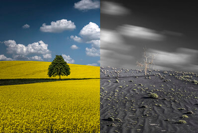 Photo of two seasons beside each other depicting climate change
