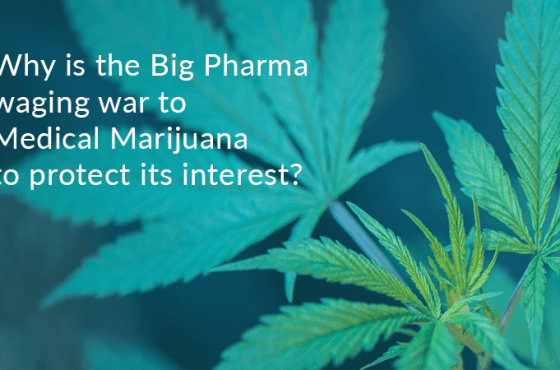 pharmaceutical companies and medical marijuana