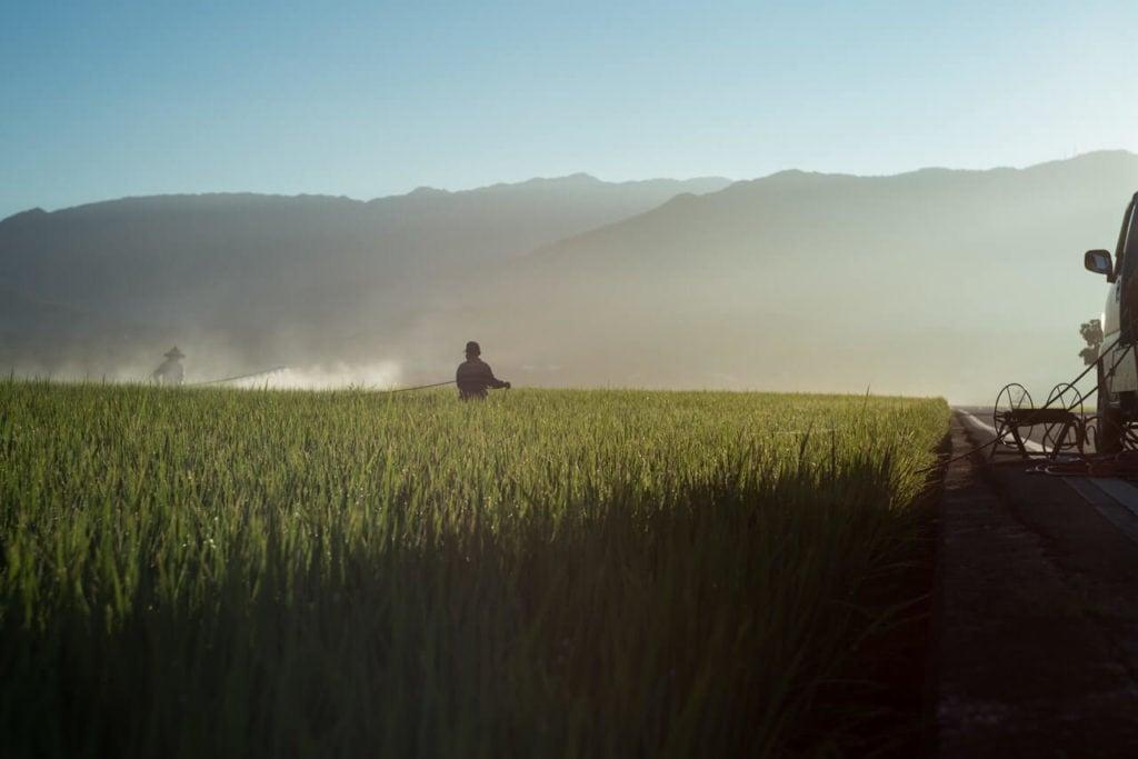 Farmer spraying chemicals on a green grass field