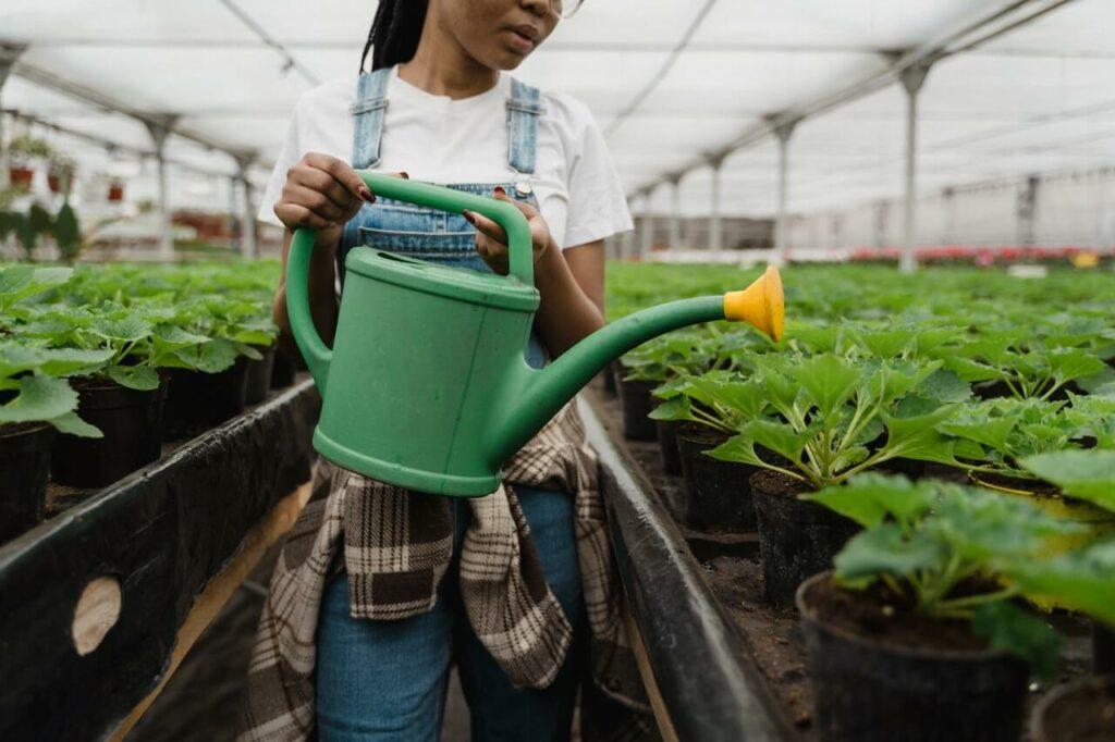Image: Pesticide alternatives