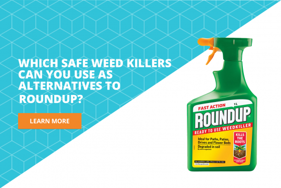 roundup weed killer substitutes